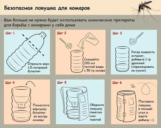 ot_komarov